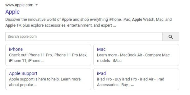 Apple First Position in Google